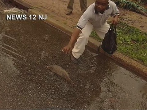 Officials Warn Against Eating Fish Found In Flooded Newark Streets