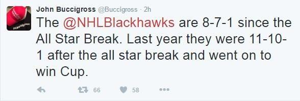 bucci hawks