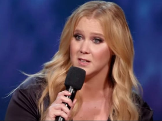 Amy Schumer Rips Apart Donald Trump Supporters On Instagram, Uses Fake Donald Trump Quote