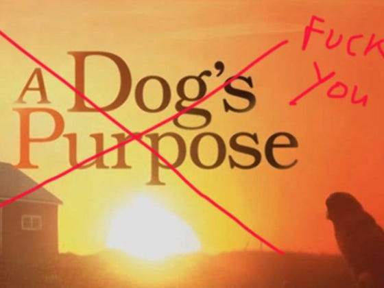 Universal Cancels The Premiere Of A Dog's Purpose
