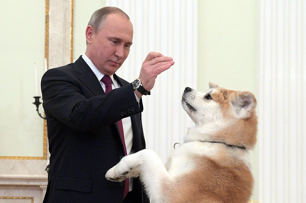 Russia President Putin gives interview to Nippon TV and Yomiuri Shimbun newspaper