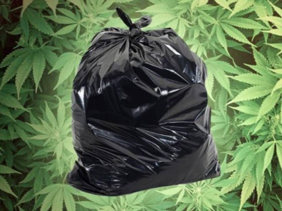 A Maine Town Is Giving Out Free Weed If You Help Clean Up The Streets