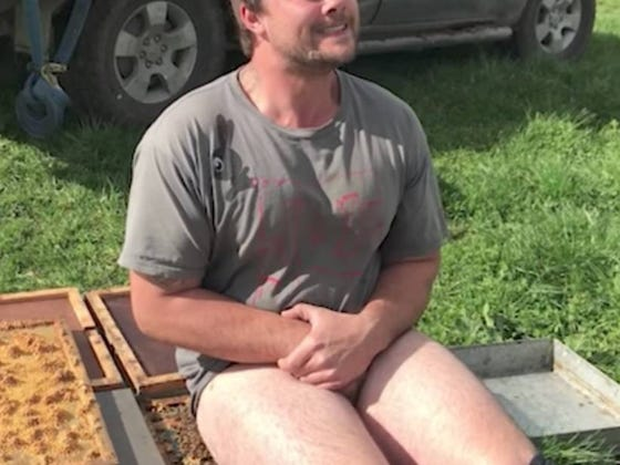 This Guy Made $700 For Sitting Bare Ass On A Bees Nest