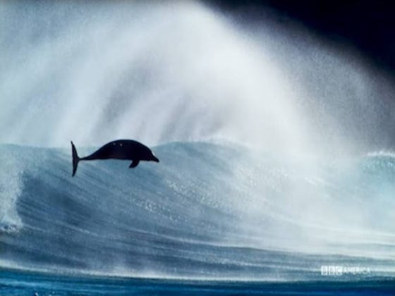 Can I Interest You In A Trailer For Blue Planet II With The Music Of Radiohead And Hans Zimmer Playing In The Background?