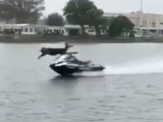 Zero Chance This Guy Who Supermanned Mach Speed Off A Jet Ski Logically Thought Things Through