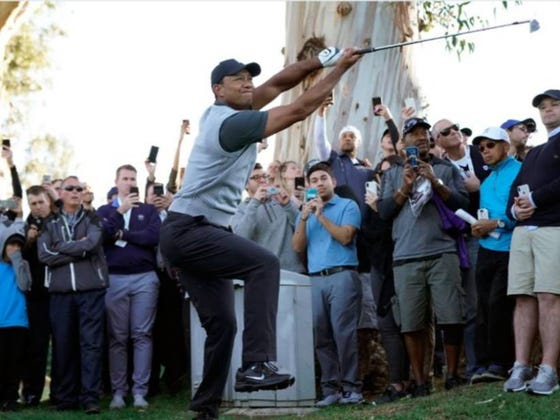 """I Can't Stop Watching This Shot From Tiger """"Fusion"""" Woods"""